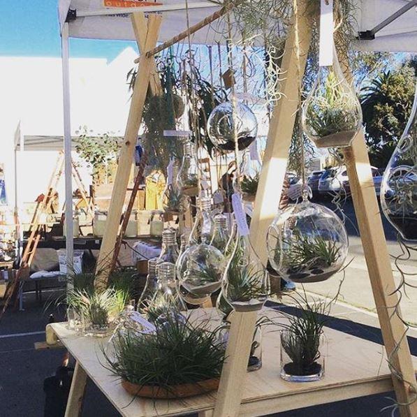 market stall co a-frame terrariums
